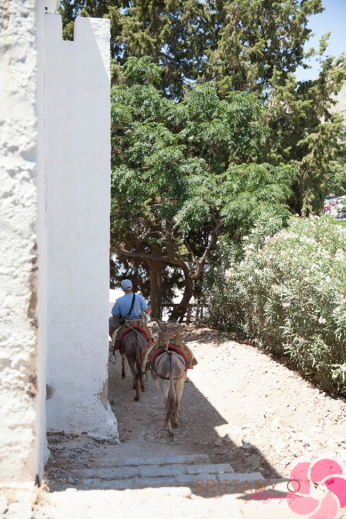 Greece__0064